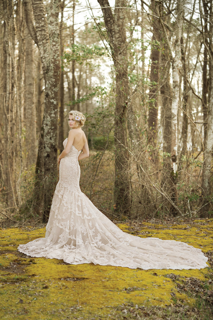 Lillian West Style 6465 at The Blushing Bride boutique in Frisco, Texas